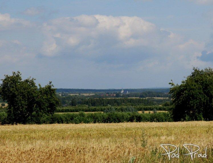 Panorama w okolicach Wygnanowa