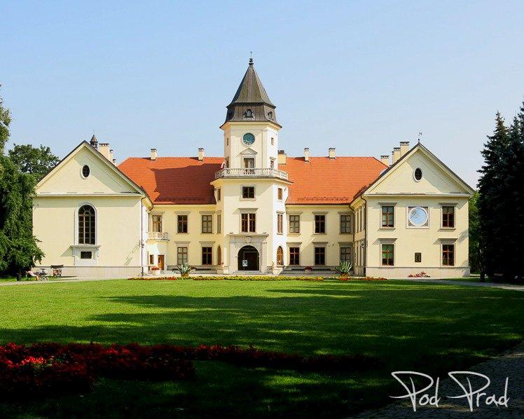 Zamek Tarnowskich w Tarnobrzegu - Dzikowie